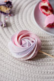 Pale pink pastel meringue on a stick. The sweetness that children love. Children`s birthday party Stock Photo