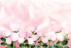 Pale pink roses on the background of light pink satin. Stock Images