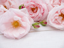 Pale pink roses bouquet on the rustic wooden background Stock Photography