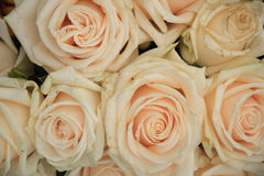 Pale pink roses. In a floral arrangement at a wedding Royalty Free Stock Images