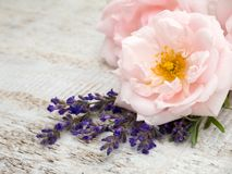 Pale pink roses and provence lavender. On the wooden rustic background Stock Photography