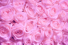 Pale pink wedding flowers. Pale pink roses in a wedding centerpiece royalty free stock photos