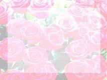 Pale rose letter paper. Textured letter paper of pale rose illustrations with frame Stock Illustration