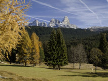 Pale  San Martino, Trentino, Dolomites, Italy Royalty Free Stock Photo