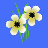Pale spring flowers royalty free illustration