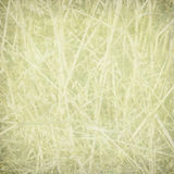 Pale straw print on paper Stock Photos
