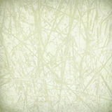 Pale straw print on paper Royalty Free Stock Images