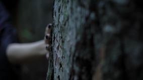 Pale witch hand with sharp black nails is touching a trunk of old tree in a dark forest, close-up