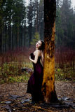 Pale woman in purple dress lying upon a tree. Pale woman in dress lying upon a tree royalty free stock photos