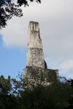 Paleis III Tikal, Guatemala royalty-vrije stock afbeelding