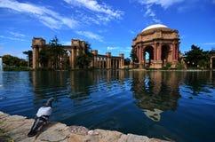 Paleis van fijne kunst met vogel en bewolkte hemel (Beste te bezoeken plaats) Stock Fotografie
