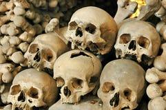 Palelle umane Fotografie Stock
