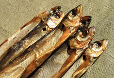 palenie zimną rybę Obraz Royalty Free