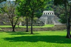 palenque废墟 库存照片