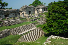 palenque废墟 库存图片