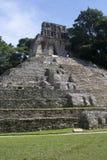 palenque Мексики Стоковые Изображения