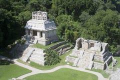 palenque Мексики Стоковое Изображение