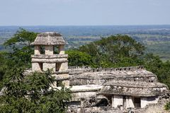 Palenque Stock Image