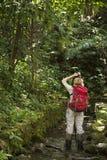 Τουρίστας που εξερευνά στο τροπικό δάσος Palenque στο Μεξικό Στοκ Εικόνες