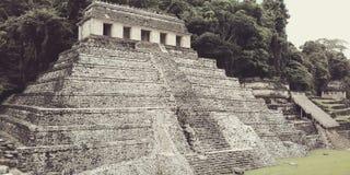 Palenque Stock Foto