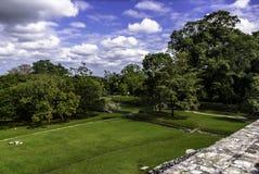 Palenque royaltyfri bild