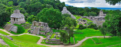 Palenque Ancient Maya Temples, Mexico. A panoramic view of the ancient Maya temples of Palenque, Mexico Stock Image