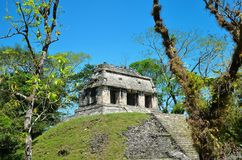 Palenque Ancient Mayan temples Royalty Free Stock Image