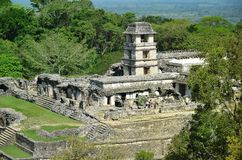 Palenque Ancient Mayan tower the palace temples Stock Images