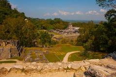 Palenque, Chiapas, Meksyk, majskie świątyni ruiny otaczać zwartą dżunglą zdjęcie stock