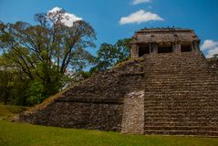 Palenque, Chiapas, Mexico: Ancient Mayan pyramid with steps among the trees in Sunny weather. Ancient Mayan city Stock Photo