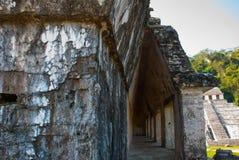 Palenque, Chiapas, Mexico: Archeologisch gebied met ruïnes, tempels en piramides in de oude stad van Maya royalty-vrije stock afbeeldingen
