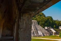 Palenque, Chiapas, Mexico: Archeologisch gebied met ruïnes, tempels en piramides in de oude stad van Maya stock foto