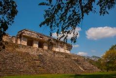 Palenque, Chiapas, Mexico: Archeologisch gebied met ruïnes, tempels en piramides in de oude stad van Maya royalty-vrije stock fotografie