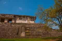 Palenque, Chiapas, Mexico: Archeologisch gebied met ruïnes, tempels en piramides in de oude stad van Maya stock foto's