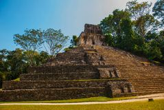Palenque, Chiapas, Mexico: Huge ancient pyramid with steps in the archaeological complex. PALENQUE, MEXICO: Huge ancient pyramid with steps in the Royalty Free Stock Images