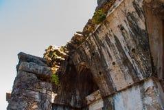 Palenque Chiapas Mexiko Enorme Klettenblätter und alte Mayastädte Lizenzfreie Stockfotografie