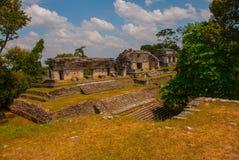 Palenque, Chiapas, Mexique : Ville maya antique parmi des arbres par temps ensoleillé Images stock