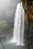 palenque de México Cachoeira foto de stock royalty free