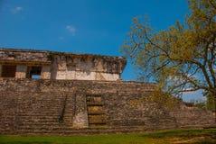 Palenque, il Chiapas, Messico: Area archeologica con le rovine, le tempie e le piramidi nella città antica della maya fotografie stock