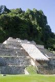 Palenque - le Mexique Photos libres de droits