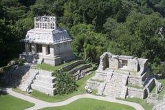 Palenque - México fotos de stock royalty free