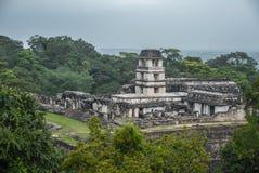 Palenque Majskie ruiny w Chiapas Meksyk obrazy royalty free