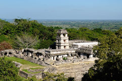 Palenque Maya ruins in Mexico. Ancient city of Palenque sits like a king on a throne of jungle where plains meet mountains. The picture presents general view of Royalty Free Stock Photos