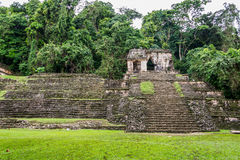 Palenque Mayan City. Ruins in the Jungle, Chiapas, traveling thr Royalty Free Stock Images
