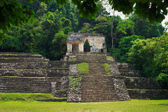 Palenque Mayan ruins Stock Photos