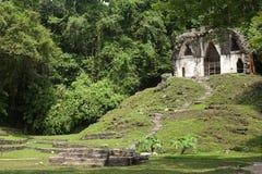 Palenque Mayan ruins, Chiapas, Mexico Royalty Free Stock Image