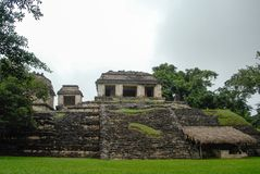 Palenque Mayan Ruins in Chiapas Mexico royalty free stock photo