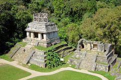 Palenque Mayan ruins temple of the Sun in Mexico Stock Photography