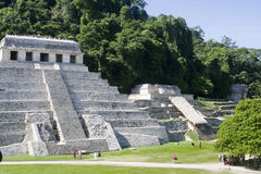Palenque - mexico Royalty Free Stock Photo
