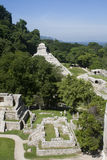 Palenque - mexico Stock Image